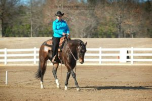 Julia Binkley and Get the Word Out compete in Western Dressage at the Newton County Saddle Club show in Conyers.
